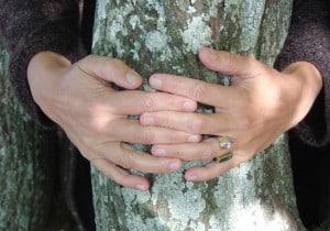 Händer uumarmenen einen Lindenstamm