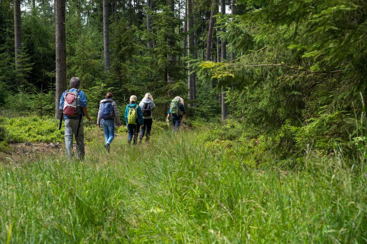 Wanderung Odenwald